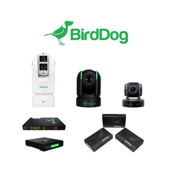 BirdDog_news